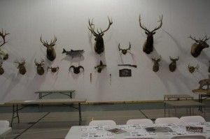 Two walls are covered with mounted animals from hunters -  one with birds, one with deer, elk, bear, etc. the dinner is held annually on the last Friday in February. normal attendance between 250 and 300